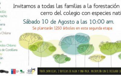 Participa junto a tu familia en la Reforestación 2019, en el cerro del colegio